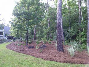 Milledgeville, GA Landscaping